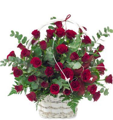 kosz pełen czerwonych róż