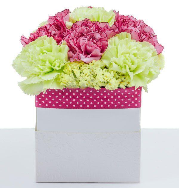 flowerbox gozdziki
