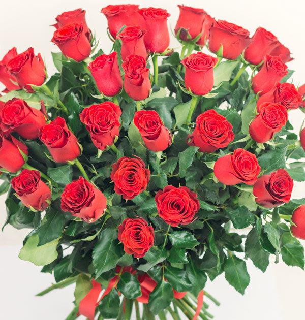 bukiet-czerwone-roze raciborz